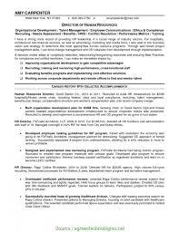 Executive Summary Outline Business Ns Executive Summary N Sample Outline Under