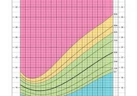 Bmi Chart Child Bmi Chart For Boys Bmi Chart Male Child Body Mass Index Bmi A Guide