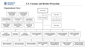 Dhs Org Chart Department Of Homeland Security Organizational Chart Us