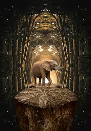 sculpture, travel, outdoors, elephant ...