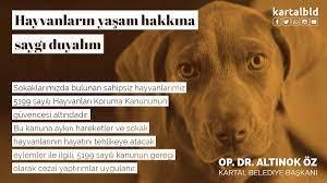 """Kartal Belediyesi on Twitter: """"Sokaklarımızda bulunan sahipsiz  hayvanlarımız 5199 sayılı Hayvanları Koruma Kanununun güvencesi altındadır.  Bu kanuna aykırı hareketler ve sokak hayvanlarının hayatını tehlikeye  atacak eylemler ile ilgili, 5199 sayılı ..."""