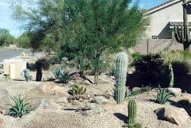 Small Picture Desert Landscape Design Ideas this desert landscaping design uses