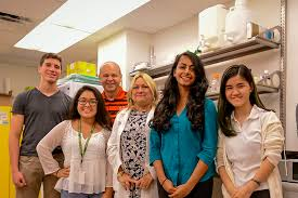 biochemistry and molecular biology at miller school of medicine howard hughes high school scholars began research internships in labs of drs daunert dr toborek