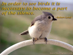Birds Quotes 100 Famous Birds Quotes And Sayings Gallery Golfian 8