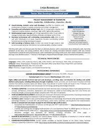 Resume Sample Word Software Engineer Resume Template Word New Resume Samples Program 36