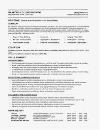 Resume Example Objective Objective In A Resume Unique The Best Way ...