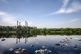 Essay Environment Pollution Essay On Environmental Pollution For Students And Children