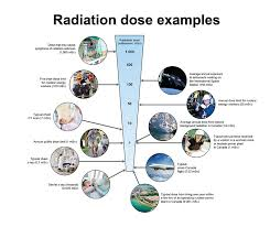 Radiation Doses Canadian Nuclear Safety Commission
