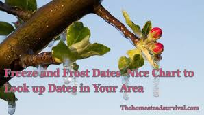 Freeze And Frost Dates Nice Chart To Look Up Dates In Your