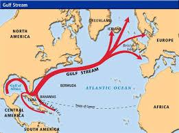 diagram of gulf stream wiring diagram basic