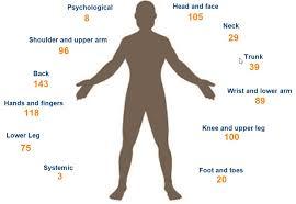Body Injury Chart Reducing Industrial Hose Reel Handling Injuries With