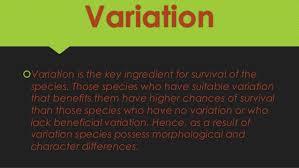 darwin s theory of evolution 17