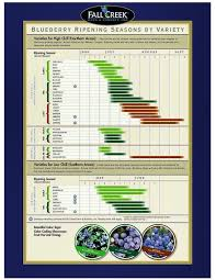 Blueberry Ripening Chart Blueberry Ripening Chart From Fallcreeknursery Com Farm