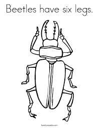 Small Picture Beetles have six legs Coloring Page Twisty Noodle