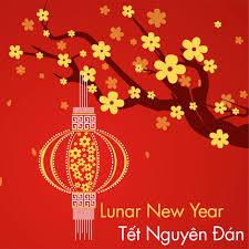 Resultado de imagem para lunar new year