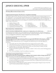 Hr Director Resume Impressive Hr Assistant Sample Resume Beauteous Hr Professional Resumes