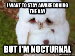 I want to stay awake during the day But i'm nocturnal - First ... via Relatably.com