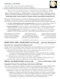 Cfo Resume Non Profit Ceo Resume Examples Cfo Resume Template Chief Custom Cfo Resume