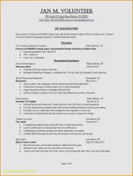 Awesome Resume Examples For Teachers Unique Teaching Resume Examples