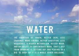 Water Quotes Simple Water Ocean Inspiration Quotes Surf Quotes Pinterest Surf