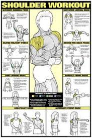 Co Ed Shoulder Workout Professional Fitness Gym Wall Chart