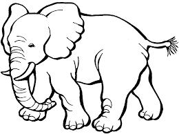 elephant coloring page. Beautiful Elephant Coloring Pages Of Elephants For Kids Elephant Color L43 Intended Elephant Coloring Page
