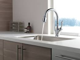 Delta Pull Down Kitchen Faucet Delta Kitchen Faucets Best Reviews Of 2017
