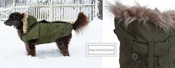 dog coats dog jacket dog fashion dog clothes