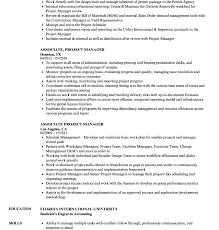 Project Manager Resume Samples Technical Sample Doc Sap Cv ...