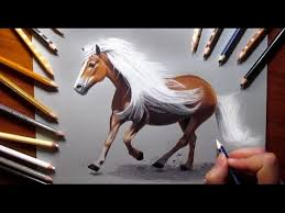 horse drawing in color. Unique Drawing Drawing A Horse With Colored Pencils  Speed Draw  Jasmina Susak To In Color