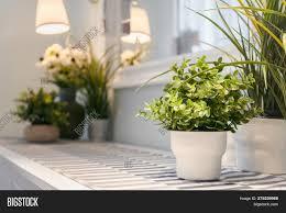 Big Flower Vase Design Artificial Flower Vase Image Photo Free Trial Bigstock