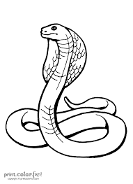 King cobra coloring page - Print. Color. Fun!