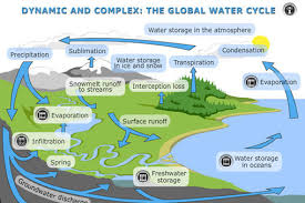 watercycle   sciencelearn hubdynamic and complex  the global water cycle