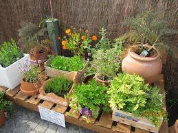 Small Picture Container Garden Design Home Interior Design Ideas 2017