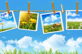 Картинки по запросу лето