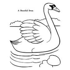 Top 10 Swan Kleurplaten Voor Uw Kleintjes Momjunccom