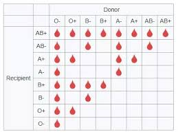 Universal Blood Type Chart Can A Person With A Blood O Type Receive Ab Blood Quora