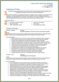 Gallery Of Personal Driver Resume Resume File Template Format Latest