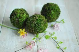 Decorative Moss Balls Decorative Moss Balls Best Ball 100 70