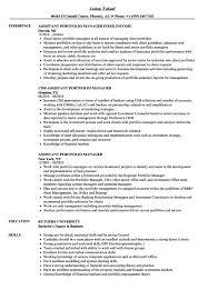 Portfolio Manager Resume Bestresume Com