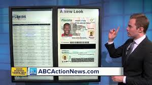 Florida Licence Licence Number Driver Driver Florida