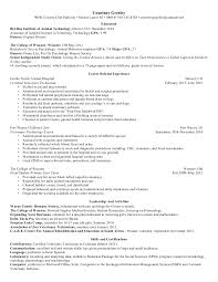 example introduction dissertation years