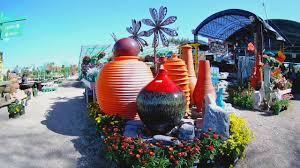 tucson s amazing cactus farms nurseries hd