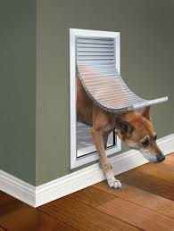 extreme weather pet doors