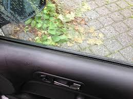 Img 3614 Türverkleidung Folie Nahe Fenster Löst Sich Ab Vw