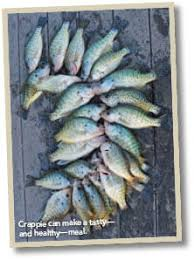 Geist Reservoir Depth Chart Fish Consumption Indiana Fishing Regulations 2019