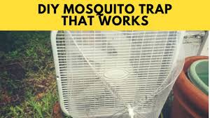 how to make a mosquito trap with a box fan and food net for less than 20