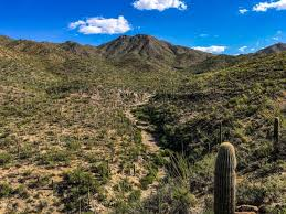 These countries are those in the world with the highest average topographical elevation of all of the landmasses within their respective borders. Hiking Wasson Peak In Saguaro National Park Arizona Six Pack Of Peaks Challenge