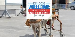 diy dog wheelchair how to make a