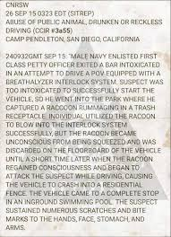 One Of The Best Incident Reports Ive Ever Read Album On Imgur